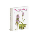 ORCHIDEES SAUVAGES D'EUROPE